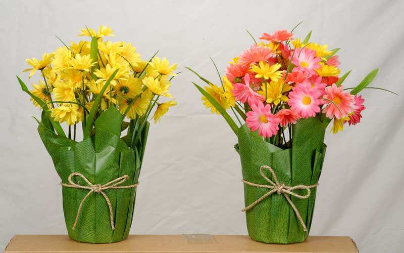 Clipping path services Bg remove flower